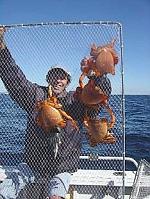 Happy Crabbers (2)