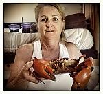 Lucinda Crab
