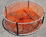 900 Orange